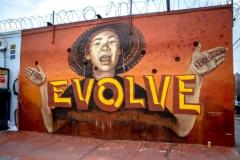evolve-tag-art