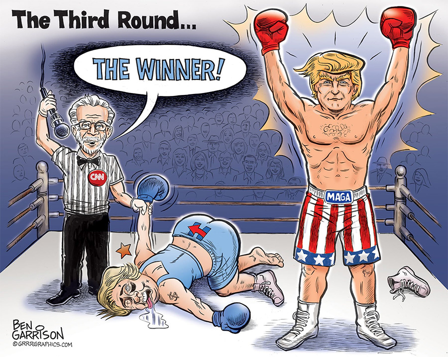 Rigged-Polling-cartoon