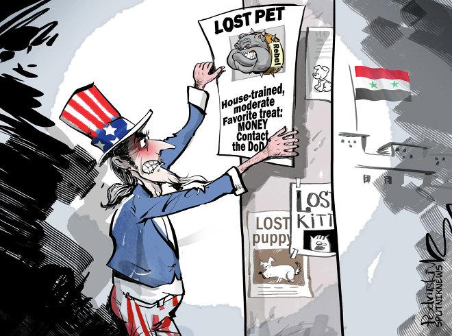 lost-pet-cartoon