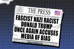 bias-cartoon