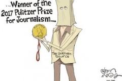 journalism-pulitzer-nobody-cartoon
