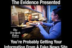 NYT-facts-meme