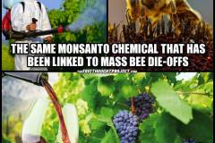 bee-wine-glyphosate-meme