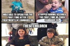 cannabis-oil-meme