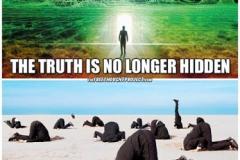 hide-from-truth-meme