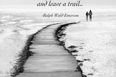 Leaving the path