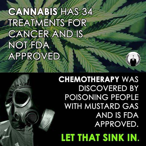 cannabis-chemo-meme