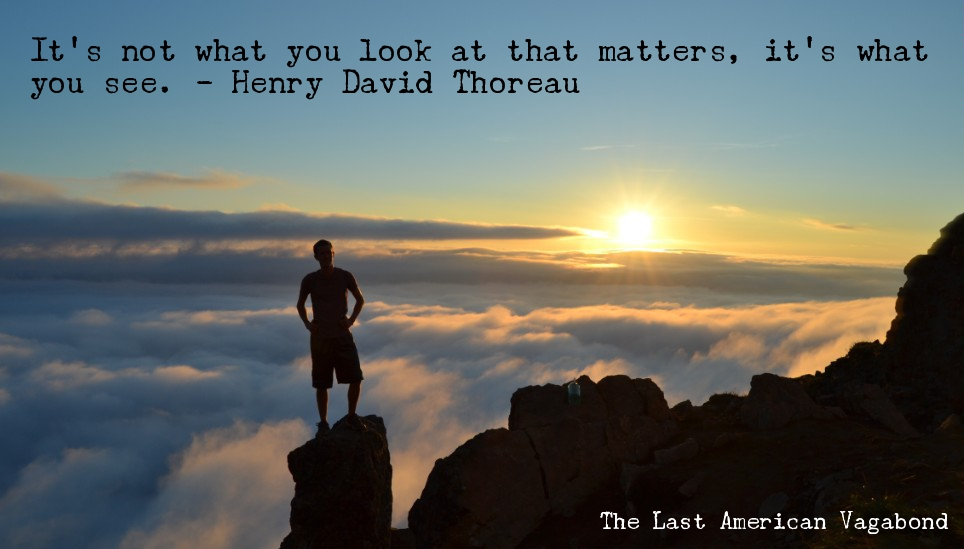 what-you-see-thoreau-meme