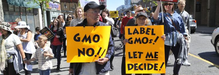 GMO let me decide
